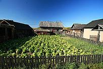 漠河县洛古河村农家院