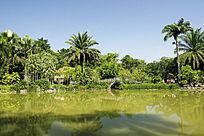 西双版纳热带植物园水景