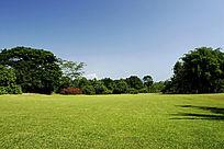 西双版纳热带植物园园景