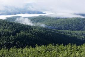 自然生态风景
