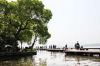 西湖湖面的桥
