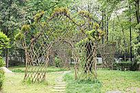 植物门造型