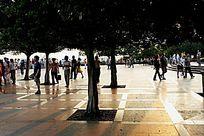 深圳莲花山休闲广场