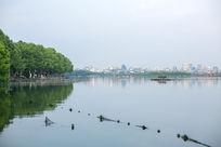 杭州西湖北山路城市风景