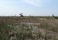 蓝天草地油田