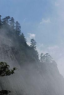 云雾迷漫华山松