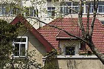青岛的红瓦房窗户
