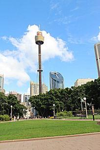 悉尼电视塔广场