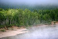 森林河之雾