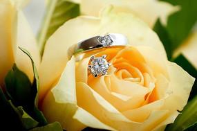 放在玫瑰花中的结婚钻戒