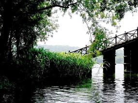浙江杭州西湖风景