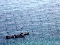 大连海滨渔业养殖场