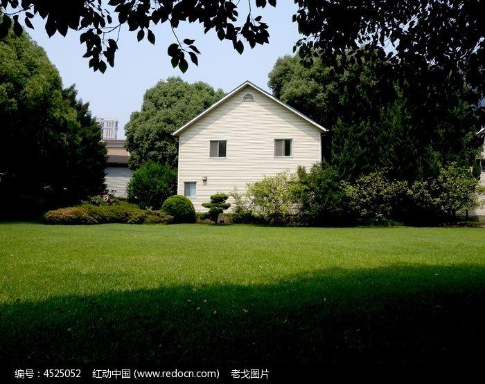 绿色环保的白色别墅