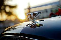 汽车车头上的立体标志