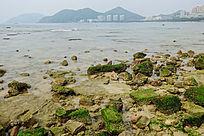 大东海海滨礁石