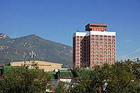 绿色植物包围的城市建筑风光