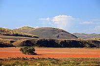 额尔古纳山区红草地