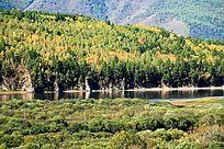 额尔古纳河两岸的森林秋色