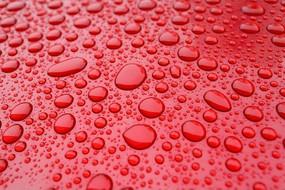 红色背景上的雨水水珠背景素材