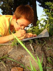 玩耍小孩子在草丛里画画