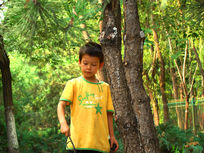 树林里开心的玩的孩子