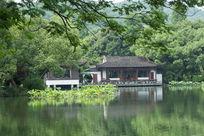 杭州西湖荷塘园林建筑园林景观