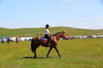 草原上骑马的美女
