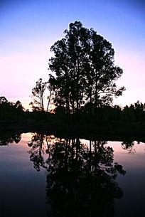 湖泊树林暮色
