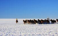 雪地上奔跑的马群