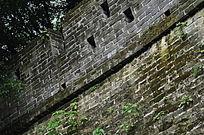 长满青苔的城墙