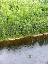 荡舟森林河