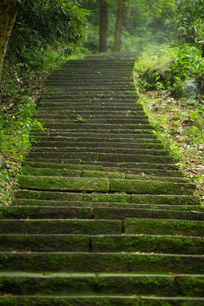 山路青苔石板