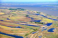 抚远黑龙江畔湿地