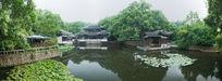 杭州西湖荷塘园林建筑