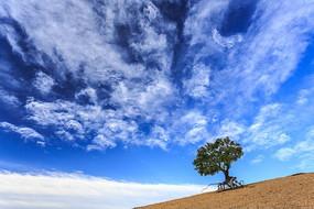 内蒙古赤峰翁牛特松树山风光