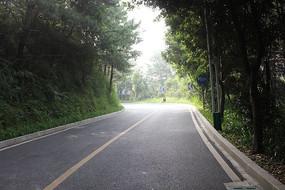 上山的柏油马路