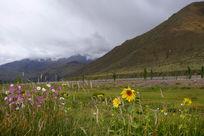 西藏高原的自然风光