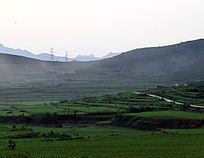绿色田野里的风景