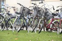 校园自行车