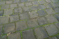 长满青苔的青砖地面