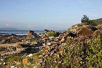 海边礁石风景