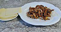中国菜京酱肉丝