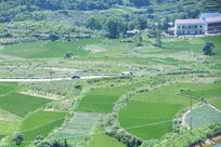 山村绿色田野