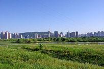 城市绿色风景