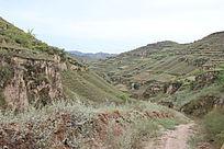 黄土高原上植被稀疏的山岭