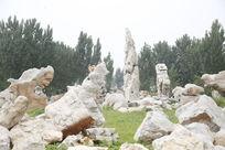 奇石 石头
