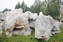 石头 奇石