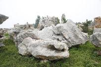 天然石头生态石头