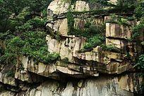 石壁上的绿色植被