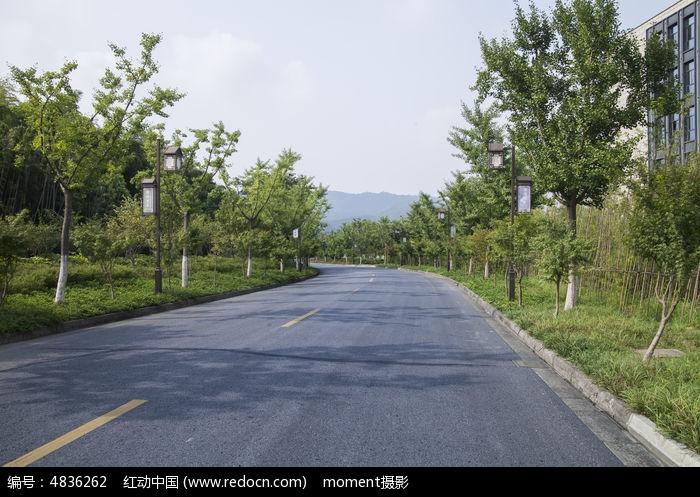 公路绿化图片